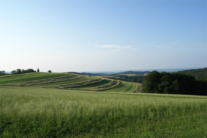 Reiters burgenland resort 3 berge for Wellnesshotel deutschland designhotels